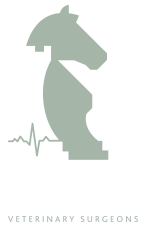Tower Equine